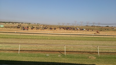 Many horses and trainers outside Randjesfontein Breakfast Clubhouse (Restaurant) in Midrand. Photo by S NB / Phindiwe Nkosi